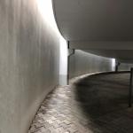 IMG_7815